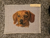 NeedlePoint Design of a Dog Head 'Elaine_1182'